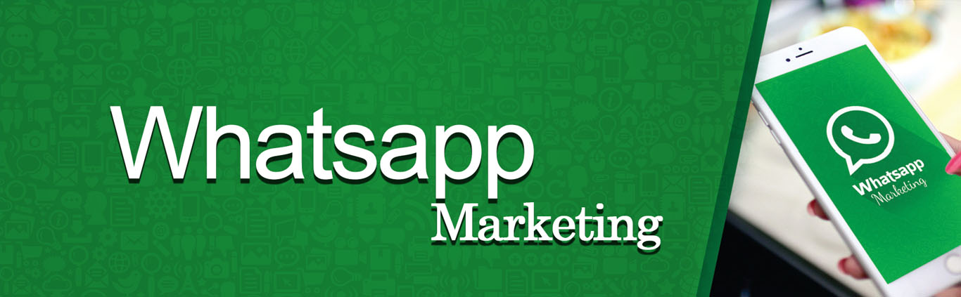 Whatsapp Marketing Service Provider